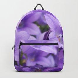 DREAMY - Purple flowers - Bellflower in the sun #1 Backpack