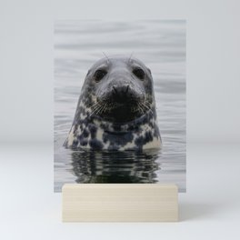 The Curious One Mini Art Print