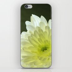 FLOWER iPhone & iPod Skin