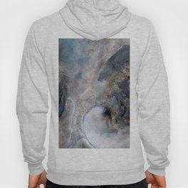 Abalone Abstract Hoody