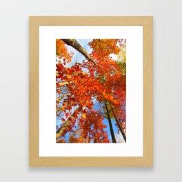 Famous fall 10 Framed Art Print