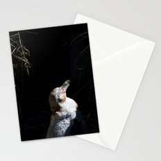 Spheniscus Humboldti III Stationery Cards