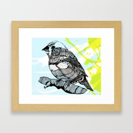 Sparrow me Framed Art Print