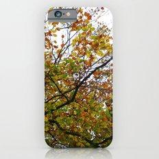 Autumn Patterns #3 iPhone 6s Slim Case