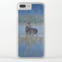 Early morning over the lake Clear iPhone Case