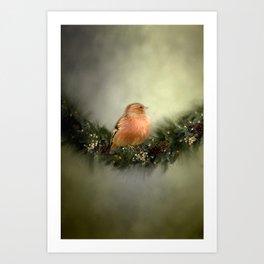 Little Bird in Christmas Wreath Art Print