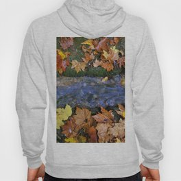 Alhambra Palace forest in autumn Hoody