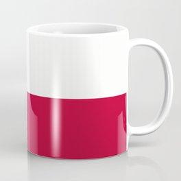 Lone Star ⭐ Texas State Flag Coffee Mug