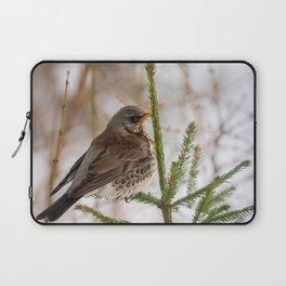 Fieldfare bird Laptop Sleeve