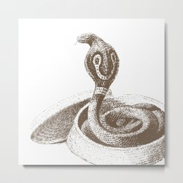 The King Cobra Metal Print