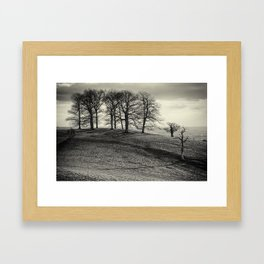 Beech copse in winter Framed Art Print