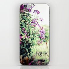 Midsummer Splendor iPhone & iPod Skin