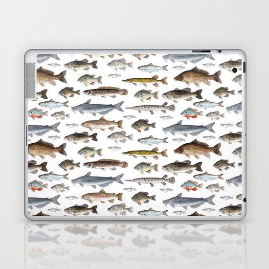 A Few Freshwater Fish by twigandmoth