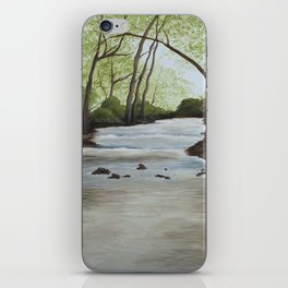 Elkhorn Creek iPhone Skin