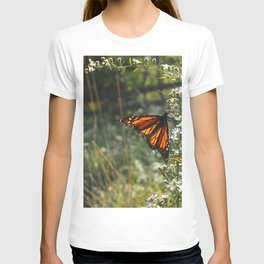 Monarch In My Mother's Field T-shirt