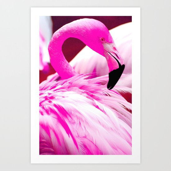 Fashion Flamingo Art Print