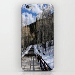 Winter iPhone Skin
