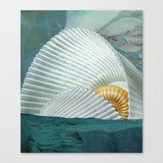 the cave (with david delruelle) Canvas Print
