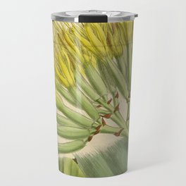 Agave fourcroydes, Asparagaceae, Agavoideae Travel Mug