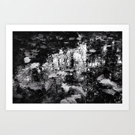 HDR daylight autumnous puddle with floating leaves black and white Art Print