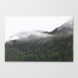 Cloudy Forest Canvas Print