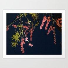 Flowers in the Sky 2 Art Print
