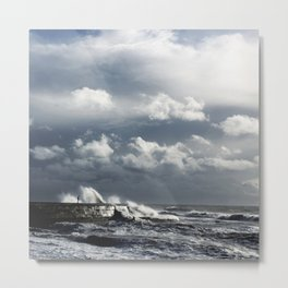 Stormy Cobb Metal Print