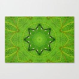 kaleidoscope image of leaf Canvas Print