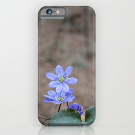 group of spontaneous flowers with lilac petals and white pistils iPhone Case