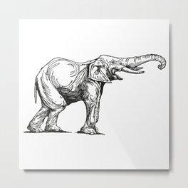 Elephant Elefante Metal Print