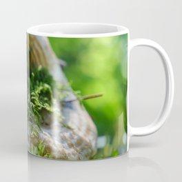 Moss Covered Mushroom Cap Coffee Mug