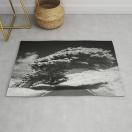 Bending Cypress Black and White Photographic Picture Rug