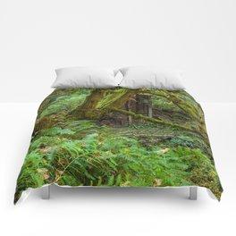 Autumn Greens Comforters