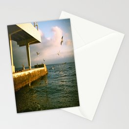 Sea mews Stationery Cards