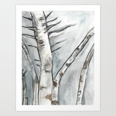 Birch Trees in Winter Art Print