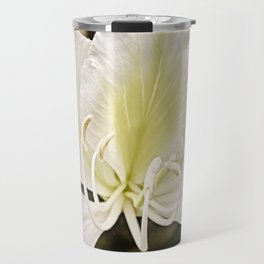 Butterfly tree or Bauhinia variegata Travel Mug