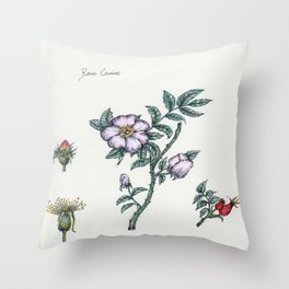 Plants & Herbs Edition Throw Pillow