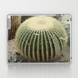 Cacti abstract Laptop & iPad Skin