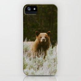 Bush Bear iPhone Case