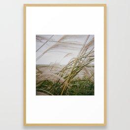 AUTUMN LEAVES (2017) Framed Art Print