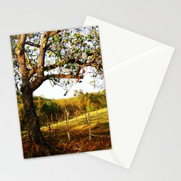 """Road """"413"""" @ Rincon Stationery Cards"""
