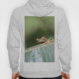 Red eye Frog on leaf Costa Rica Photography Hoody