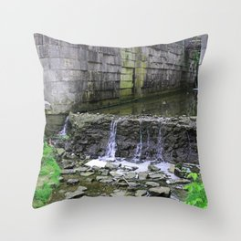Greeting the Past Throw Pillow