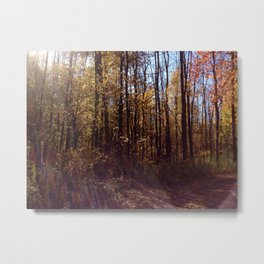 Upstate New York in the Fall 2 Metal Print