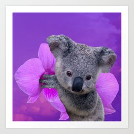 Koala and Orchid Art Print