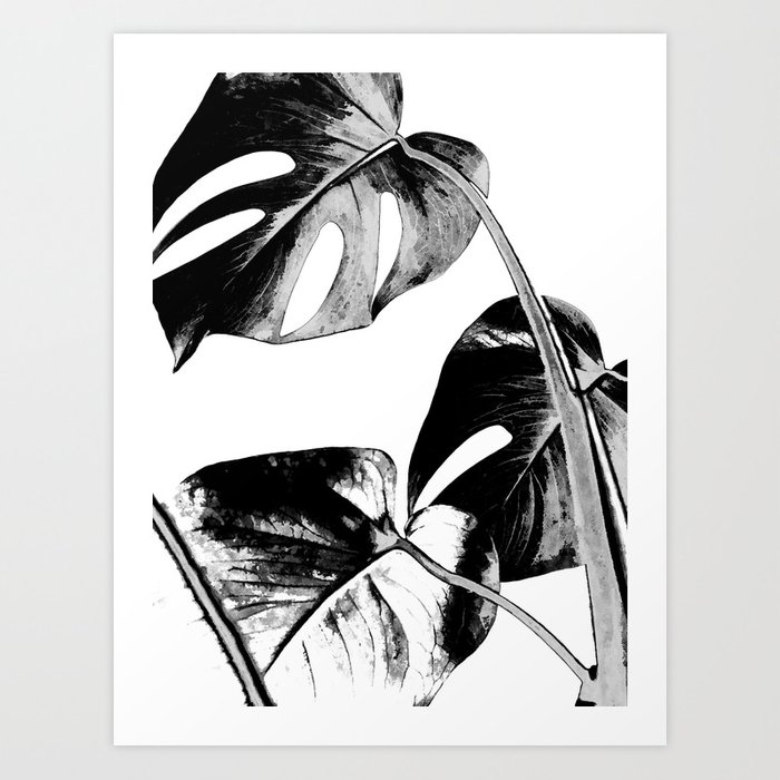 Black monstera leaves watercolor Art Print