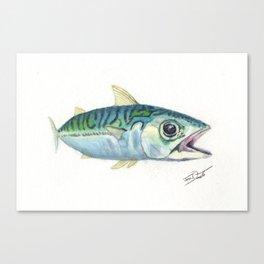 Mackerel Study Canvas Print