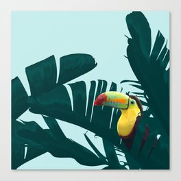 Green Toucan Tropical Banana Leaves Pattern Canvas Print