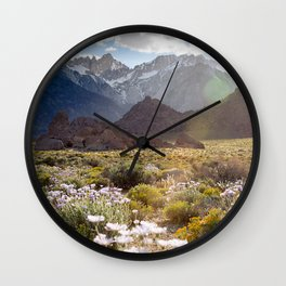 Wildflowers in Alabama Hills Wall Clock