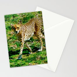 Here's Looking at You Stationery Cards